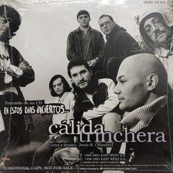calida_trinchera_single_celtas_cortos_trasera